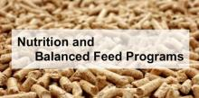 Nutrition and Balanced Feed Programs